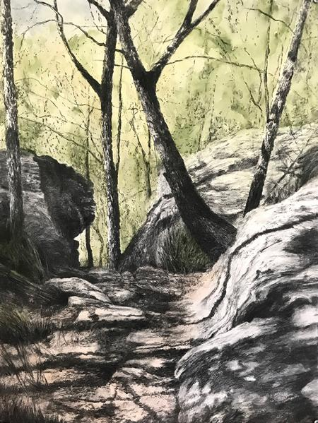 Take a breath (Garigal National Park) #2